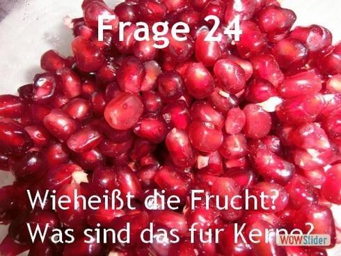 frage_24