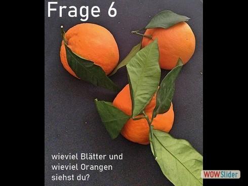 frage_6