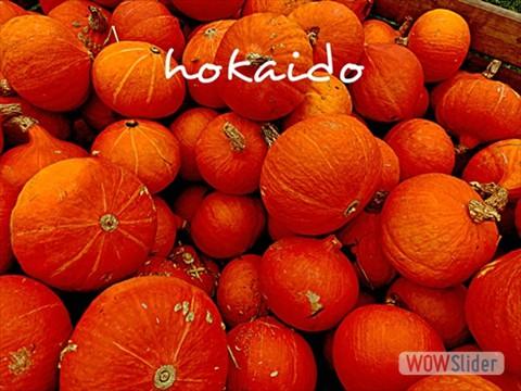 arboretumkokaiido