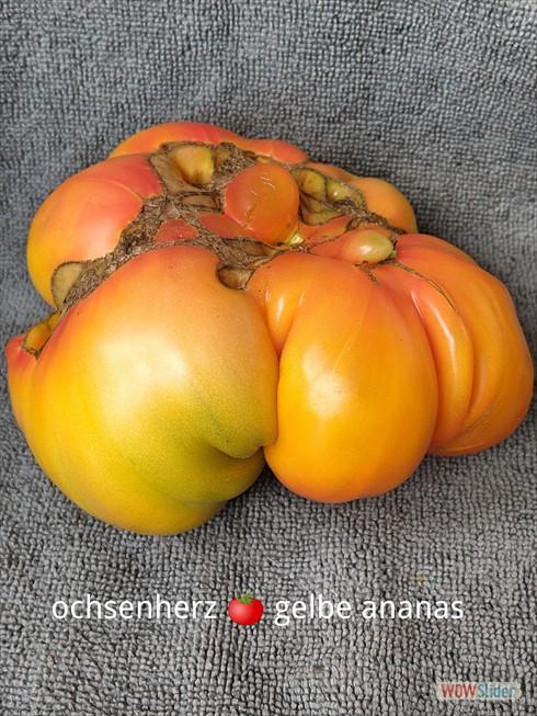 gelbe ananas