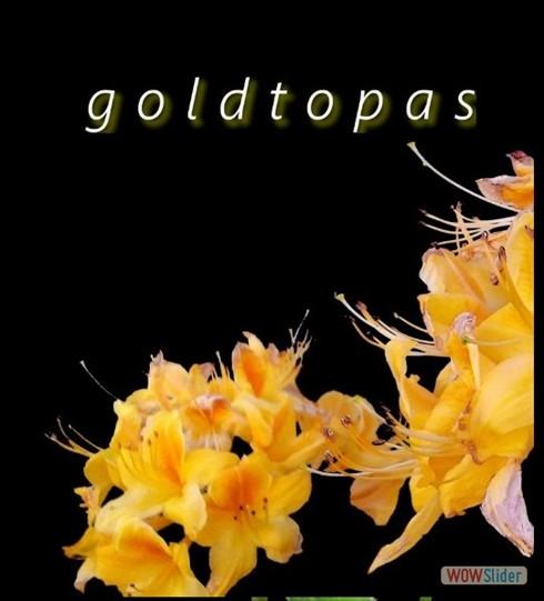 goldtopas